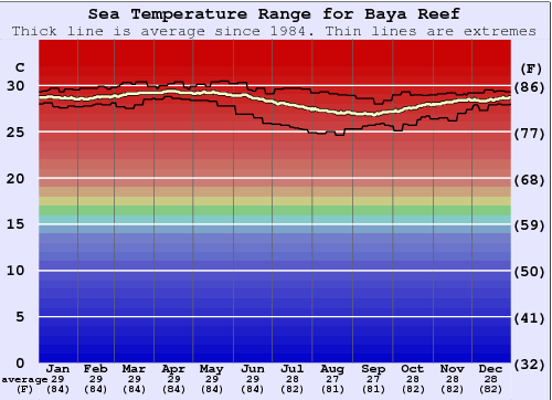 Baya Reef Gráfico da Temperatura do Mar