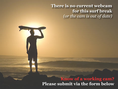 San Gregorio State Beach Webcam